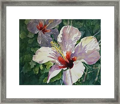 Radiant Light - Hibiscus Framed Print by Roxanne Tobaison