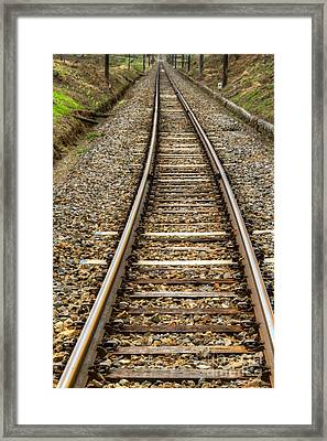 Rail Way Framed Print