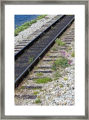Railroad To Yukon Framed Print by Sophie Vigneault
