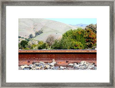 Railroad Track In Fremont California Near Historic Niles District In California . 7d12676 Framed Print by Wingsdomain Art and Photography