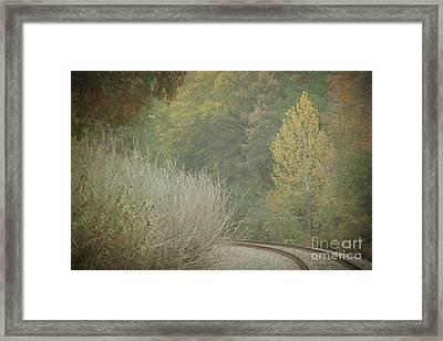 Rails Curve Into A Dreamy Autumn Framed Print by Lisa Holmgreen