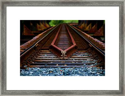 Railway Track Leading To Where Framed Print