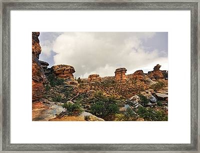 Rain At The Needles District Framed Print by Marty Koch