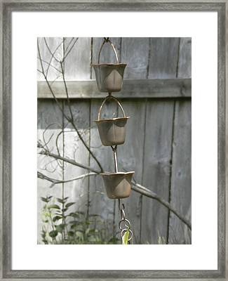 Rain Catchers Framed Print by Pamela Patch