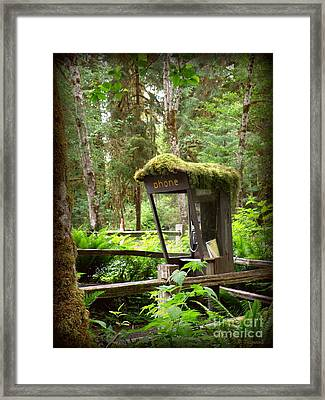 Rain Forest Telephone Booth Framed Print