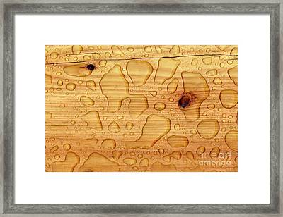 Framed Print featuring the photograph Rain On Wood by Charles Lupica