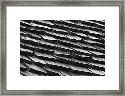 Rain Shield Framed Print by Nicholas Evans