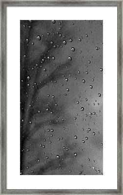 Framed Print featuring the photograph Rain Window by Michael Dohnalek