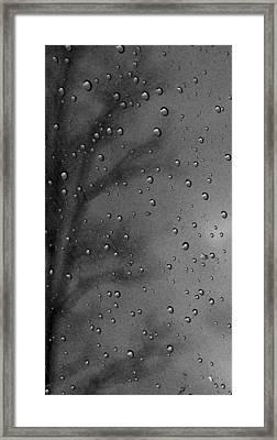 Rain Window Framed Print