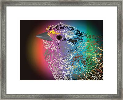 Rainbow Bird Framed Print by Michelle Bergersen