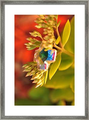Rainbow Crystal  Framed Print
