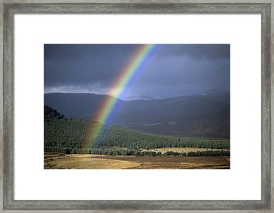 Rainbow Framed Print by Duncan Shaw