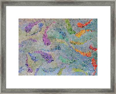 Rainbow Fish Mosaic Tile Abstract Framed Print by Debbie Portwood