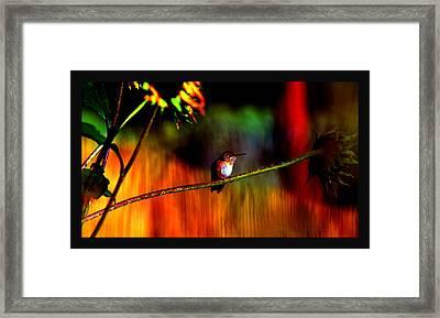 Rainbow Gardens Framed Print by Susanne Still