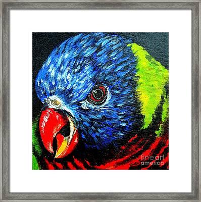 Framed Print featuring the painting Rainbow Lorikeet Look by Julie Brugh Riffey