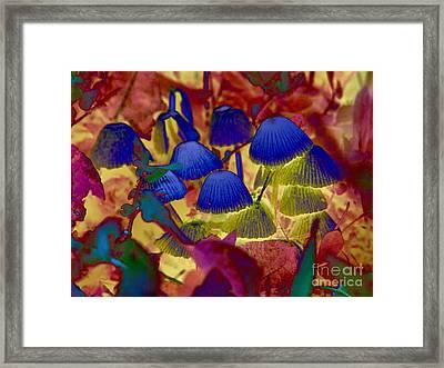 Rainbow Mushrooms Framed Print by Erica Hanel