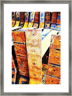Rainbow Rust-1 Framed Print by Todd Sherlock