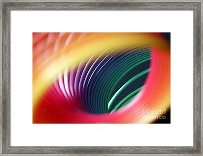 Rainbow Spring I Framed Print by Tracy Reese