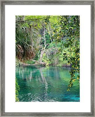 Rainbow Springs Framed Print by Judy Wanamaker