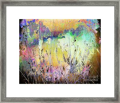 Rainbows End Framed Print by Arne Hansen