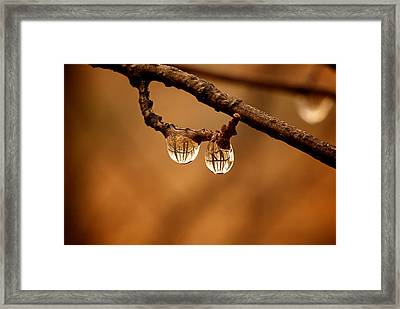 Raindrop Reflection Framed Print by Andre Faubert