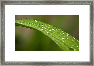 Framed Print featuring the photograph Raindrops Of Jupiter by Josef Pittner