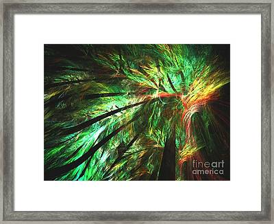 Rainforest Framed Print by Kim Sy Ok