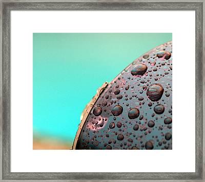 Rainglasses Framed Print
