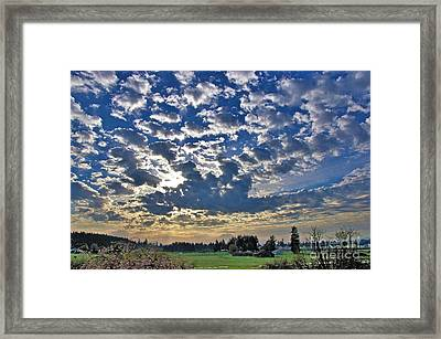 Rainier Country Framed Print by Sean Griffin