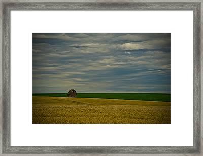 Rainy Day Blues Framed Print by Dan Mihai