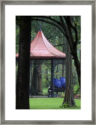 Rainy Day Framed Print by Christina Durity