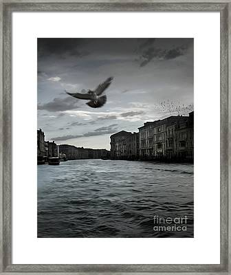 Rainy Day In Venice On The Grand Canal Framed Print by Gregory Dyer