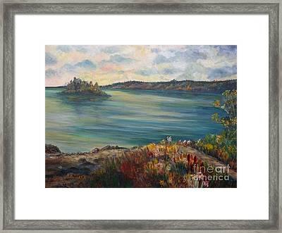 Rainy Lake Michigan Framed Print by Julie Brugh Riffey
