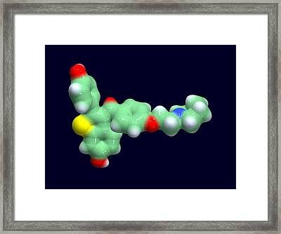 Raloxifene Osteoporosis Drug Molecule Framed Print by Dr Tim Evans