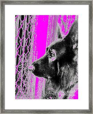 Rambo Meter 14 Framed Print by Nina Kaye