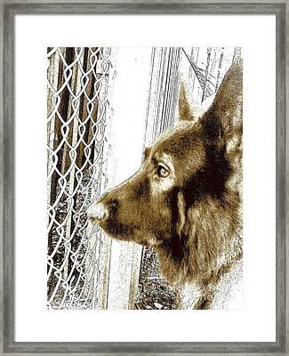 Rambo Meter Framed Print by Nina Kaye
