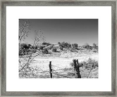 Ranch Fence And Redberry Junipers Two Framed Print