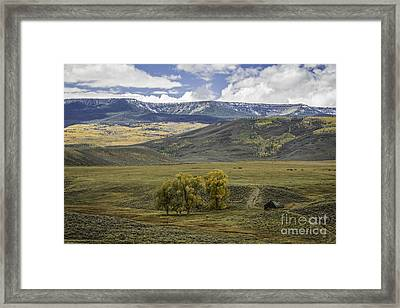 Ranch Land Framed Print by David Waldrop