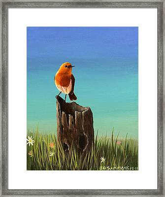 Randy The Robin Framed Print