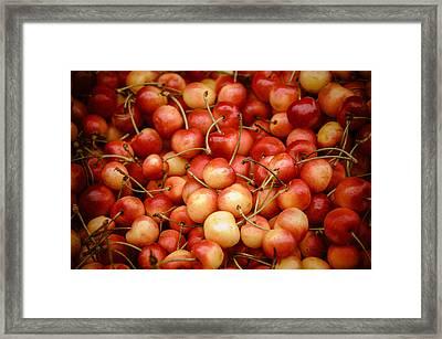 Ranier Cherries Framed Print by Jen Morrison