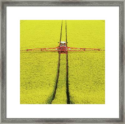 Rape Seed Spraying Framed Print by JT images