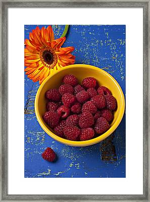 Raspberries In Yellow Bowl Framed Print by Garry Gay