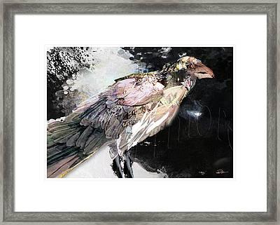 Raven 10 Framed Print by James VerDoorn