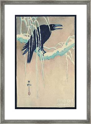 Raven In Snow Framed Print by Padre Art