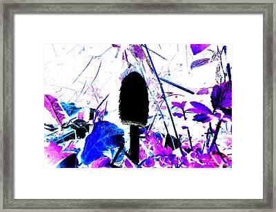 Raw Pleasures Framed Print by Cyryn Fyrcyd
