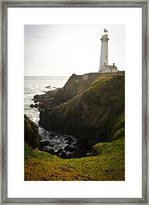 Ray Of Light Framed Print by Heather Applegate