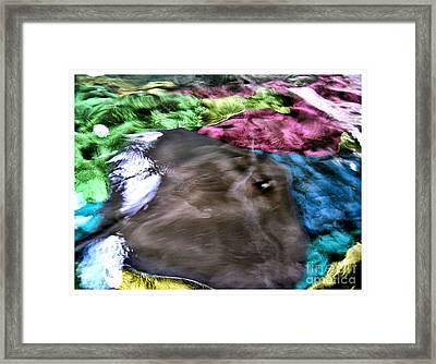 RAY Framed Print by Theo Bethel
