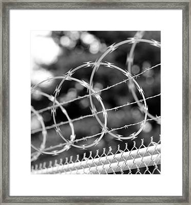 Razor Swirls Framed Print by Mike Reid