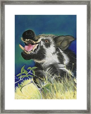 Razorback Framed Print by Tracy L Teeter