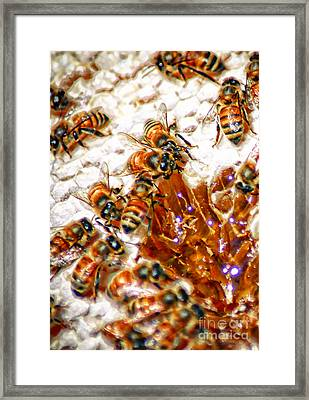 Re-construction  Framed Print by David Taylor